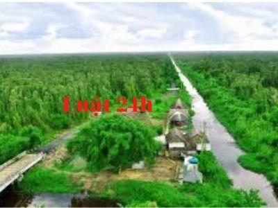 Giải quyết ly hôn nhanh tại huyện U Minh